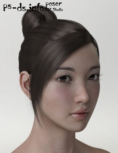 HY Updo Hair for Genesis 3 Female(s)