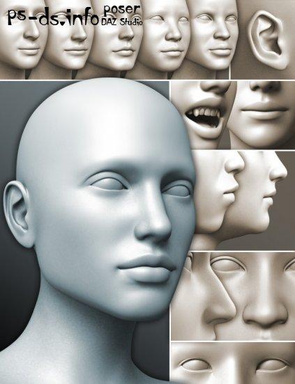 200 Plus - Head & Face Morphs for Genesis 3 Female(s)