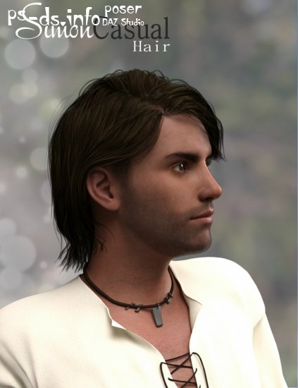 Simon Casual Hair for Genesis 3 Male(s)