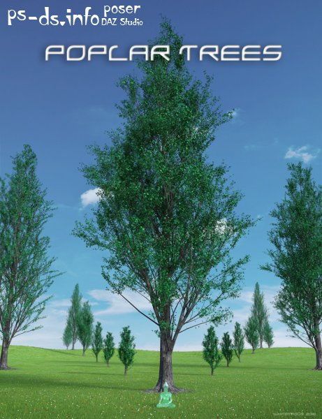 Poplar Trees Collection