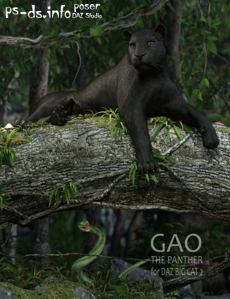 Gao The Panther for DAZ BIG CAT 2