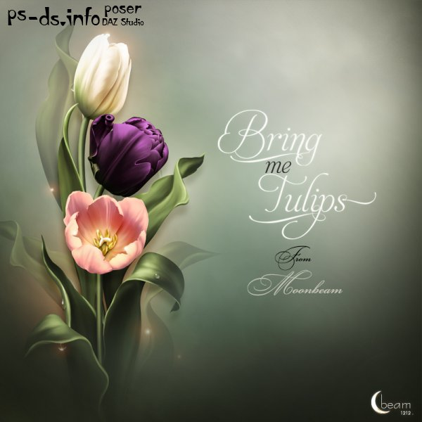 Moonbeam's Bring me Tulips